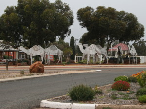 Norseman: tin camels.